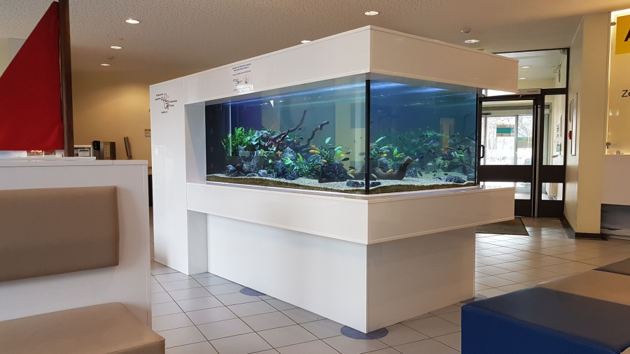 Aqua Tom Krefeld   Nano Aquaristik   Bio und Naturprodukte   Aquarienbau, Einrichtung, Pflege